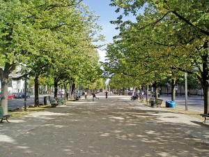 Unter den Linden, Berlins paradgata